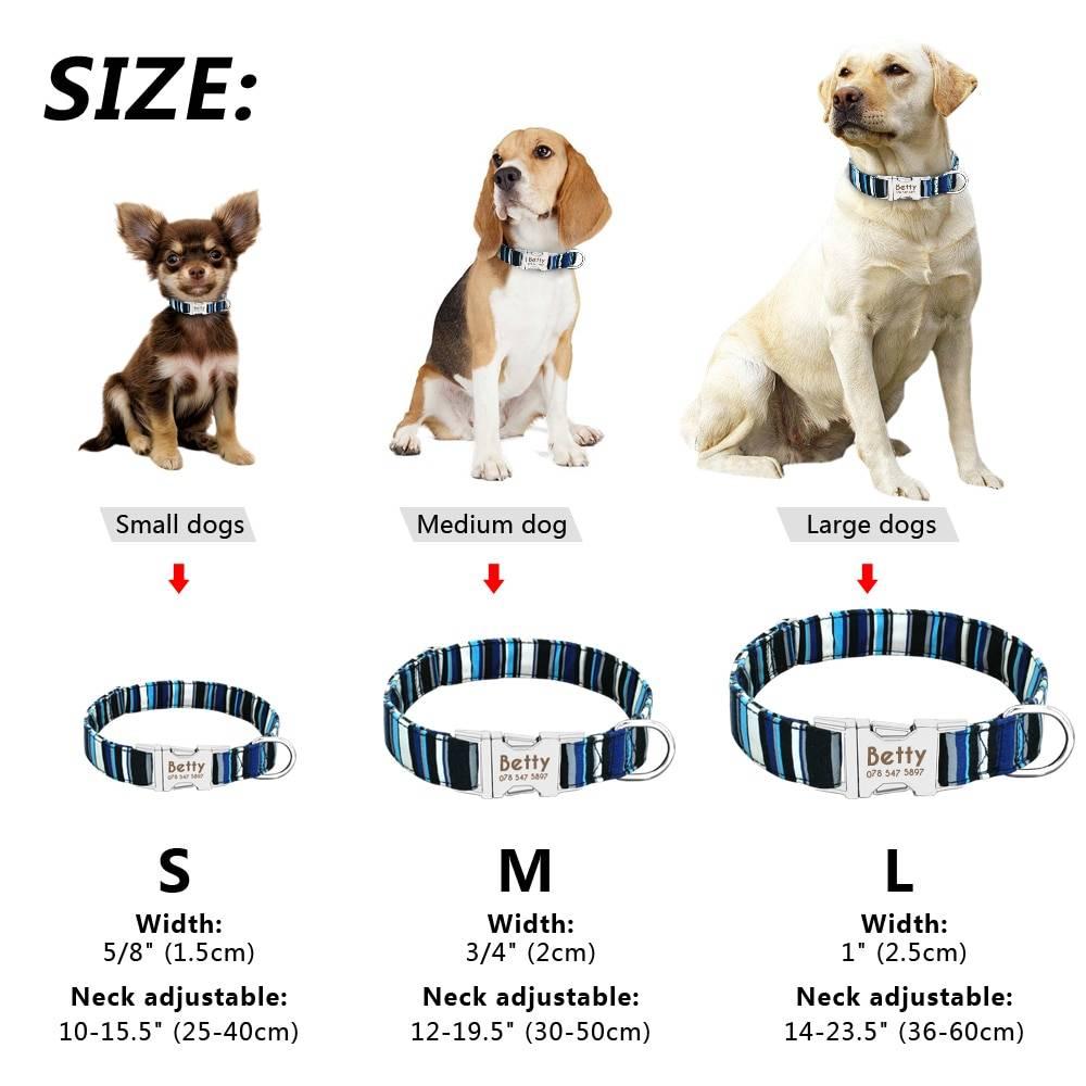 Dog Personalized Nylon Collar