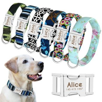 Dog Personalized Nylon Collar  My Pet World Store