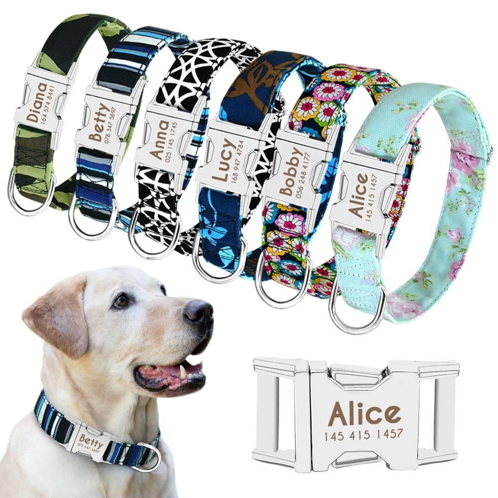 Dog Personalized Nylon Collar  My Pet World Store