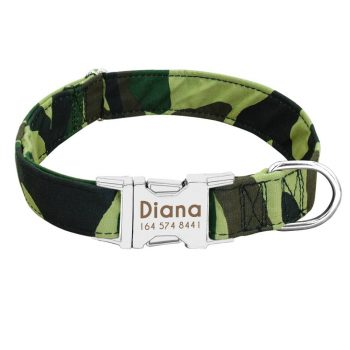 Dog Personalized Nylon Collar Color: Green Size: S My Pet World Store