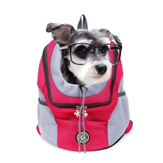 Backpack Styled Pet Carrier  My Pet World Store