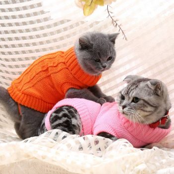 Warm Turtle Neck Sweater for Pets  My Pet World Store