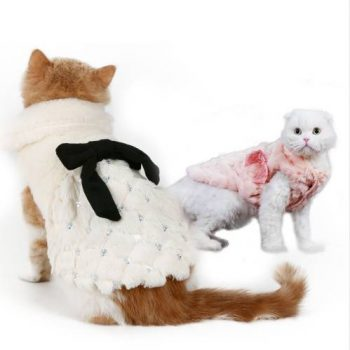 Elegant Winter Coat  My Pet World Store