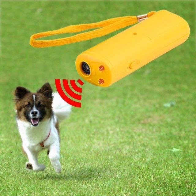 Dog's LED Ultrasonic Anti-Bark Training Device  My Pet World Store