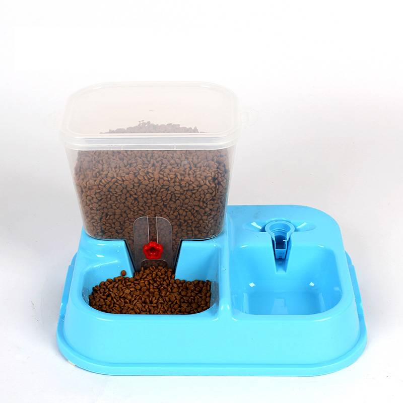 Automatic Colorful Cat Feeding Bowl  My Pet World Store
