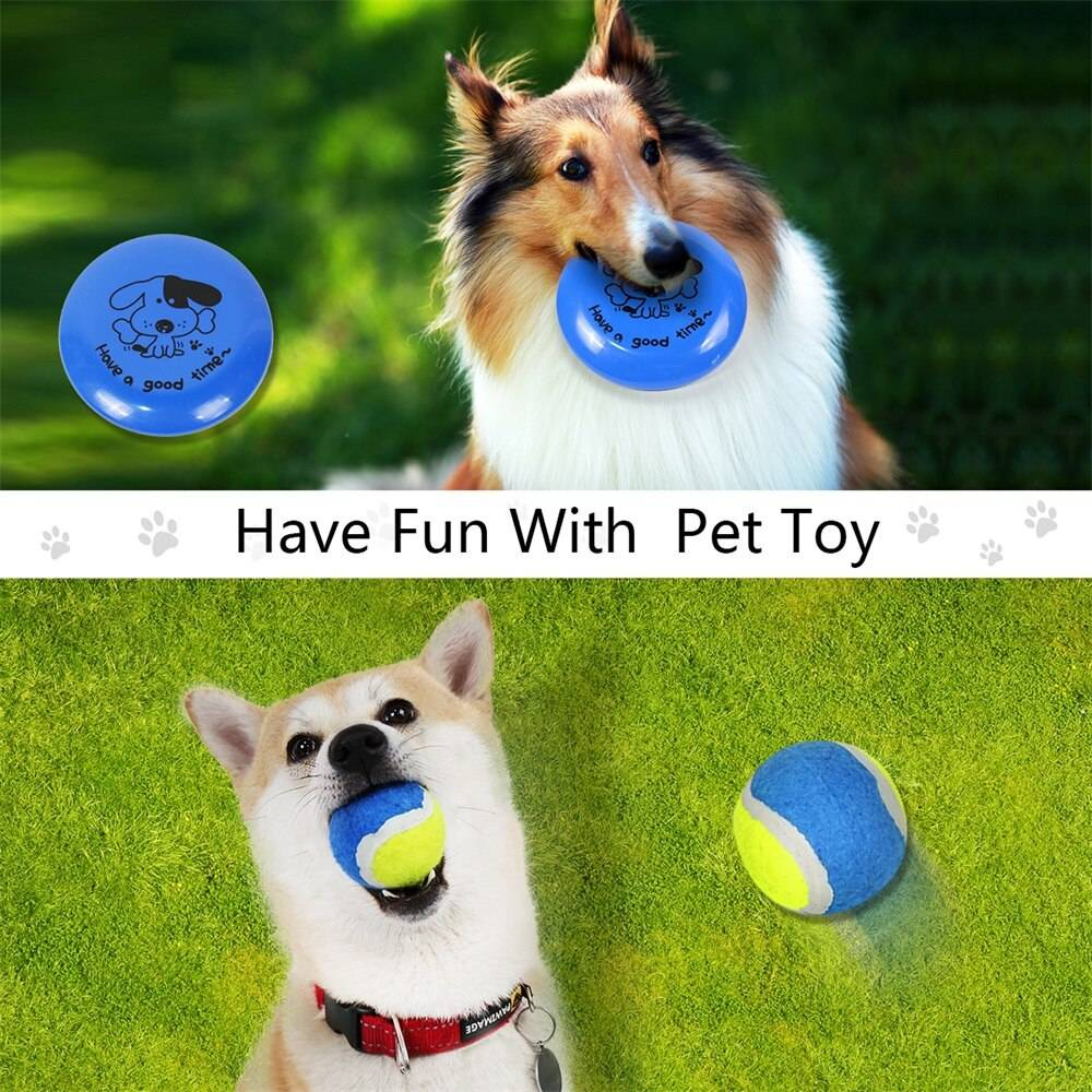 Pet Toys and Feeding Supplies 6pcs Set