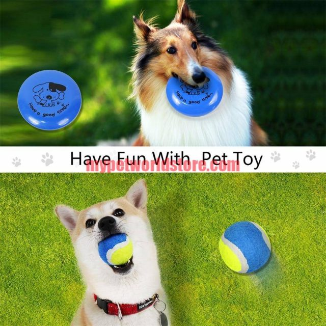 Pet Toys and Feeding Supplies 6pcs Set  My Pet World Store