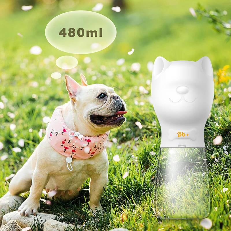 Dog Feeding Water Bottles for Outdoor Use  My Pet World Store
