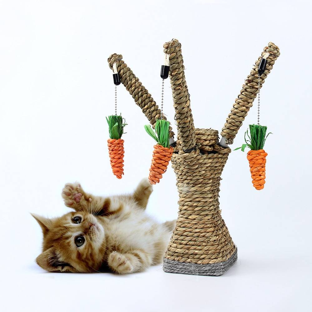 Pirate Themed Stylish Scratching House Toy for Cats