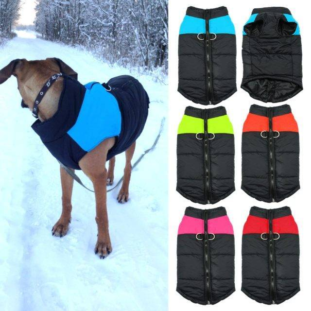 Fashion Waterproof Winter Dog's Vest  My Pet World Store