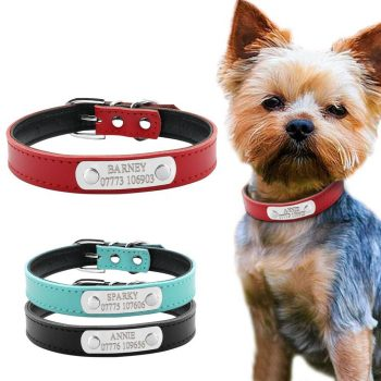 Fashion Engraved Leather Collar  My Pet World Store