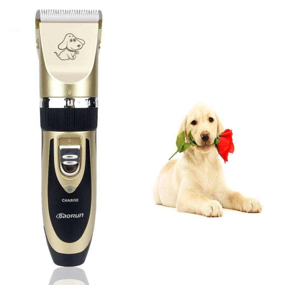 Professional Rechargeable Grooming Pet Hair Trimmer  My Pet World Store