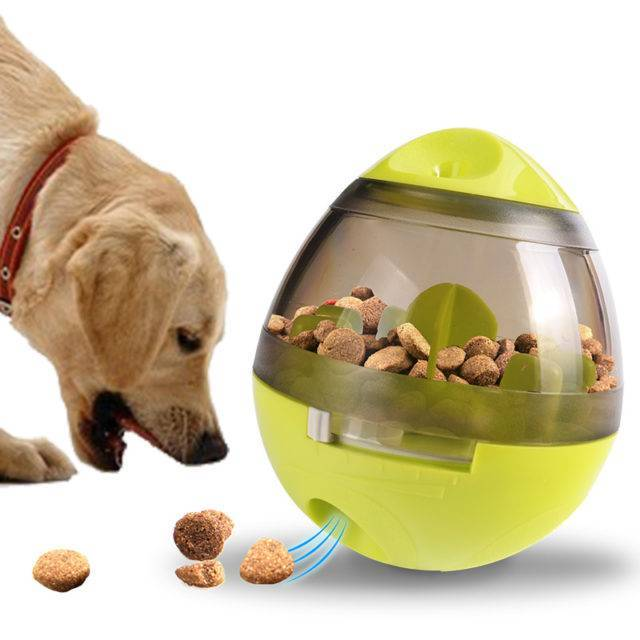 Removable Treats Dispenser Toy  My Pet World Store