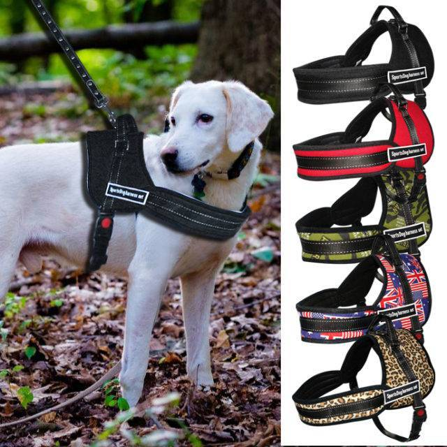 Training Nylon Dog's Harness  My Pet World Store