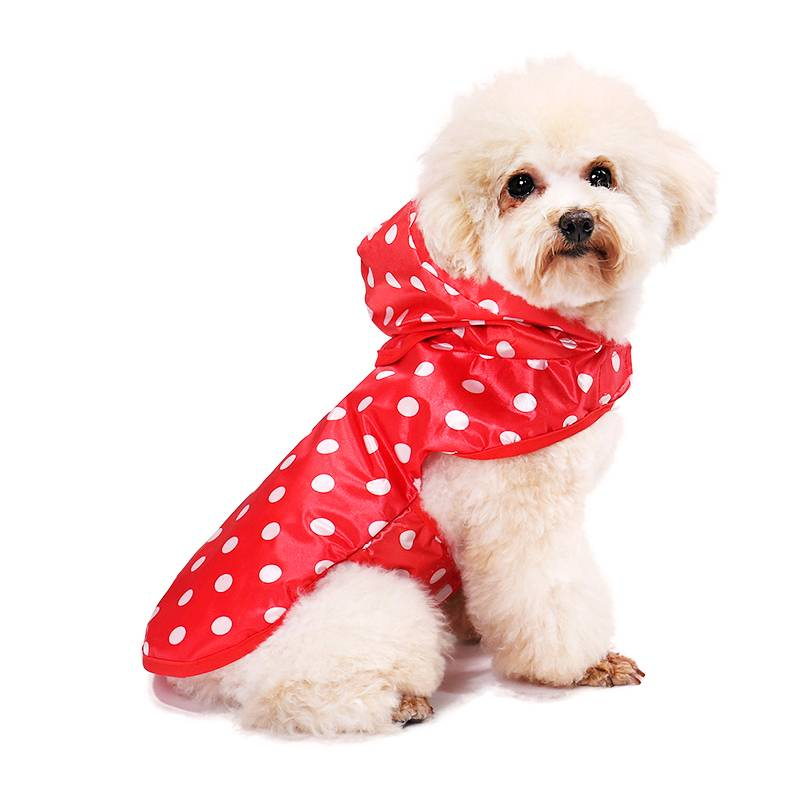 Polka Dot Printed Raincoat for Dogs  My Pet World Store