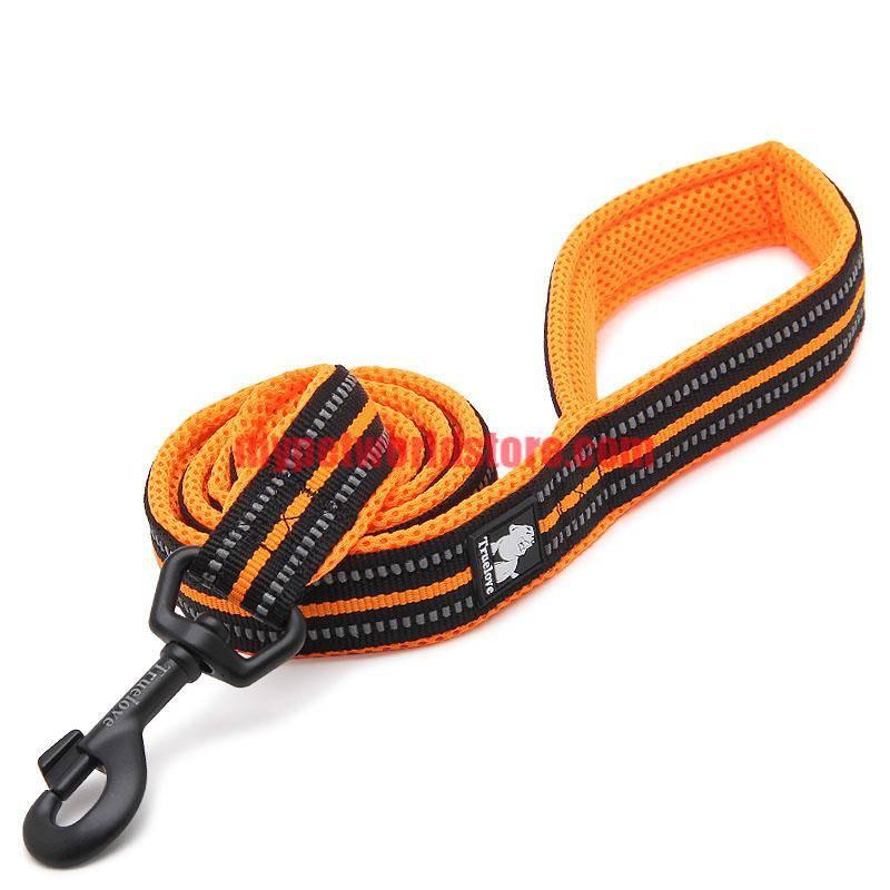 Soft Nylon Dog Leash with Reflective Stripes  My Pet World Store