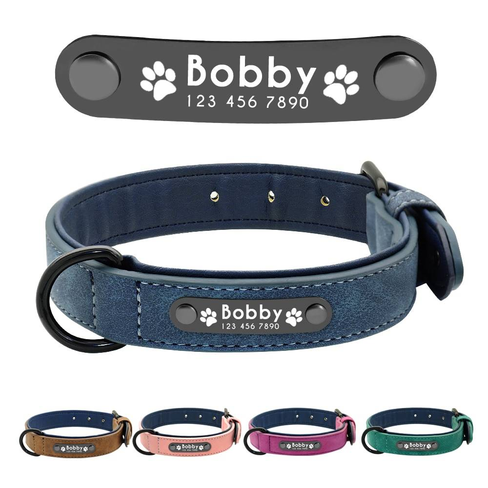 Dog's Leather Collar with ID Tag  My Pet World Store