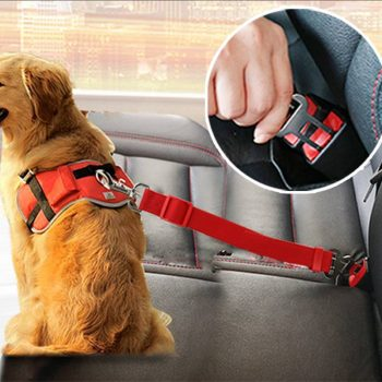 Safe Car Fiber Seat Belts For Dogs  My Pet World Store