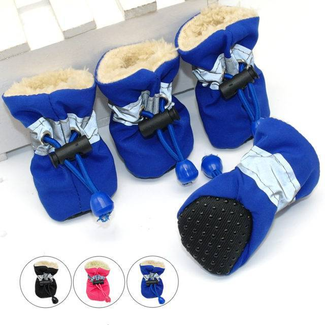 Waterproof Winter Shoes for Small Dogs and Puppies Set  My Pet World Store