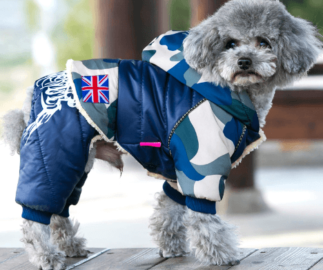 Dog's Casual Warm Jacket  My Pet World Store