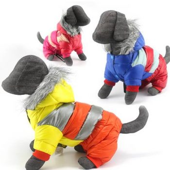 Super Warm Winter Dog's Jacket  My Pet World Store