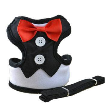 Fashion Dog Harness & Leash for small Dogs, Puppy Adjustable  My Pet World Store
