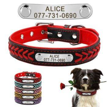 Custom Leather Dog Collar Personalized Engraved  My Pet World Store