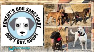 My Pet World Store ROBERTS DOG SANCTUARY https://mypetworldstore.com/?p=8029