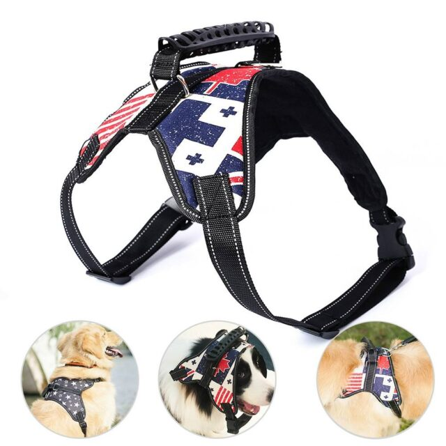 Adjustable Dog's Harness  My Pet World Store