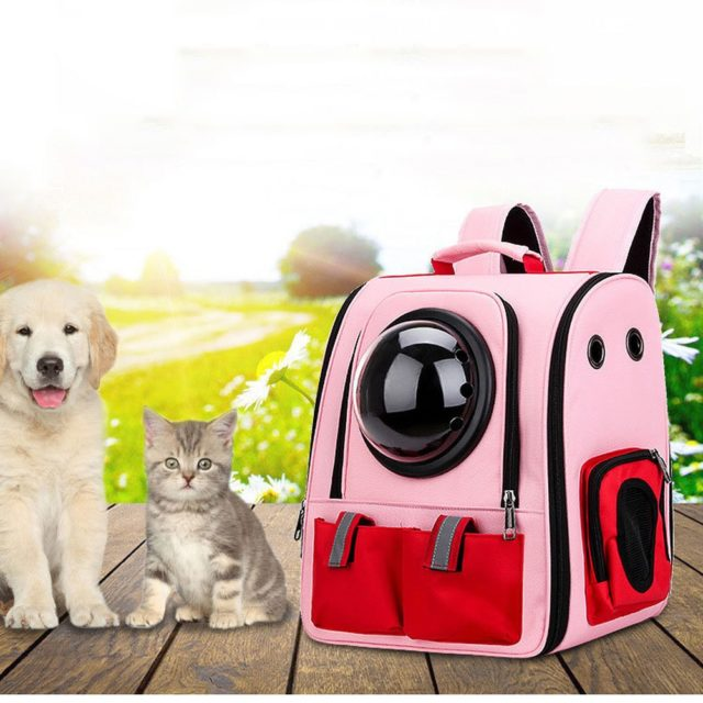 Pet Carrier Capsule Backpack for Cats and Small Dogs Airline-Approved  My Pet World Store