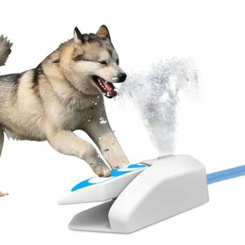 Automatic Dog Water Fountain  My Pet World Store