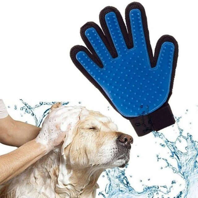 New Arrivals Silicone Pet Grooming Glove  My Pet World Store