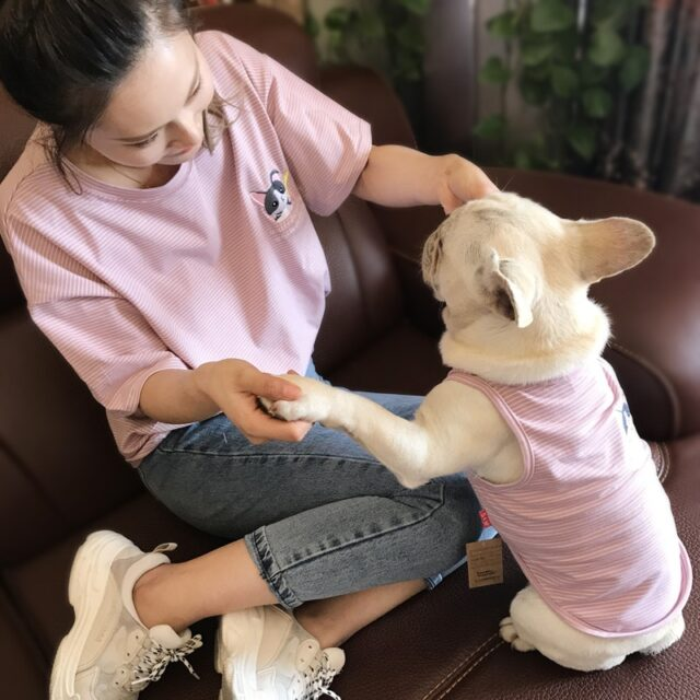 2018 Cute Dog Clothes For Small Dogs French Bulldog Cotton Vest Coat Chihuahua Clothing Spring Summer Pet Clothes for Large Dog  My Pet World Store