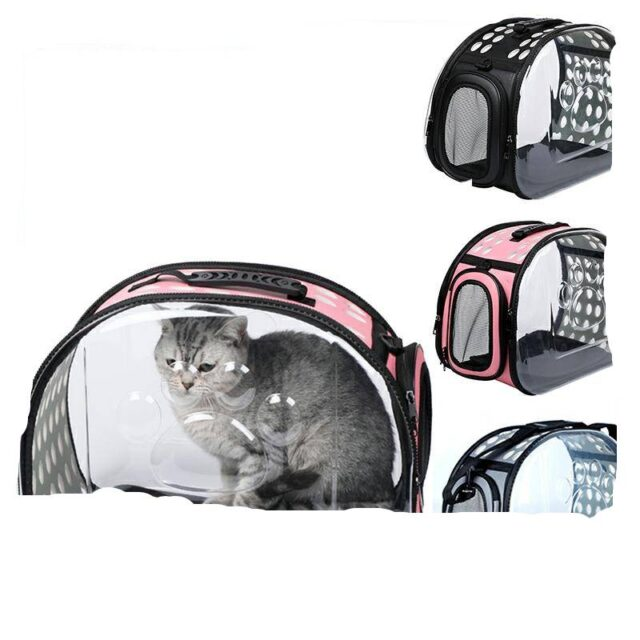 Carriers & cages Cats Cat Backpack Travel Carrier  My Pet World Store