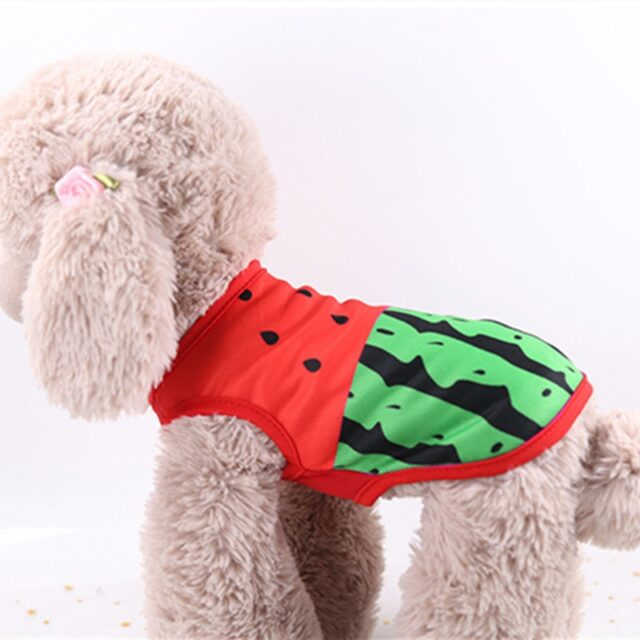 Clothing Dogs Cute Dog Clothes Watermelon Printed Cotton T-shirt  My Pet World Store