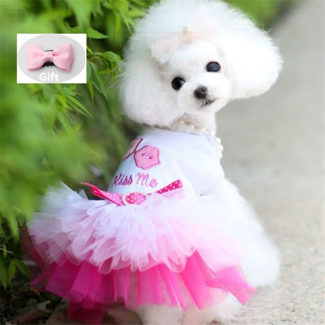 Clothing Small Dogs Sweety Princess Dress  My Pet World Store