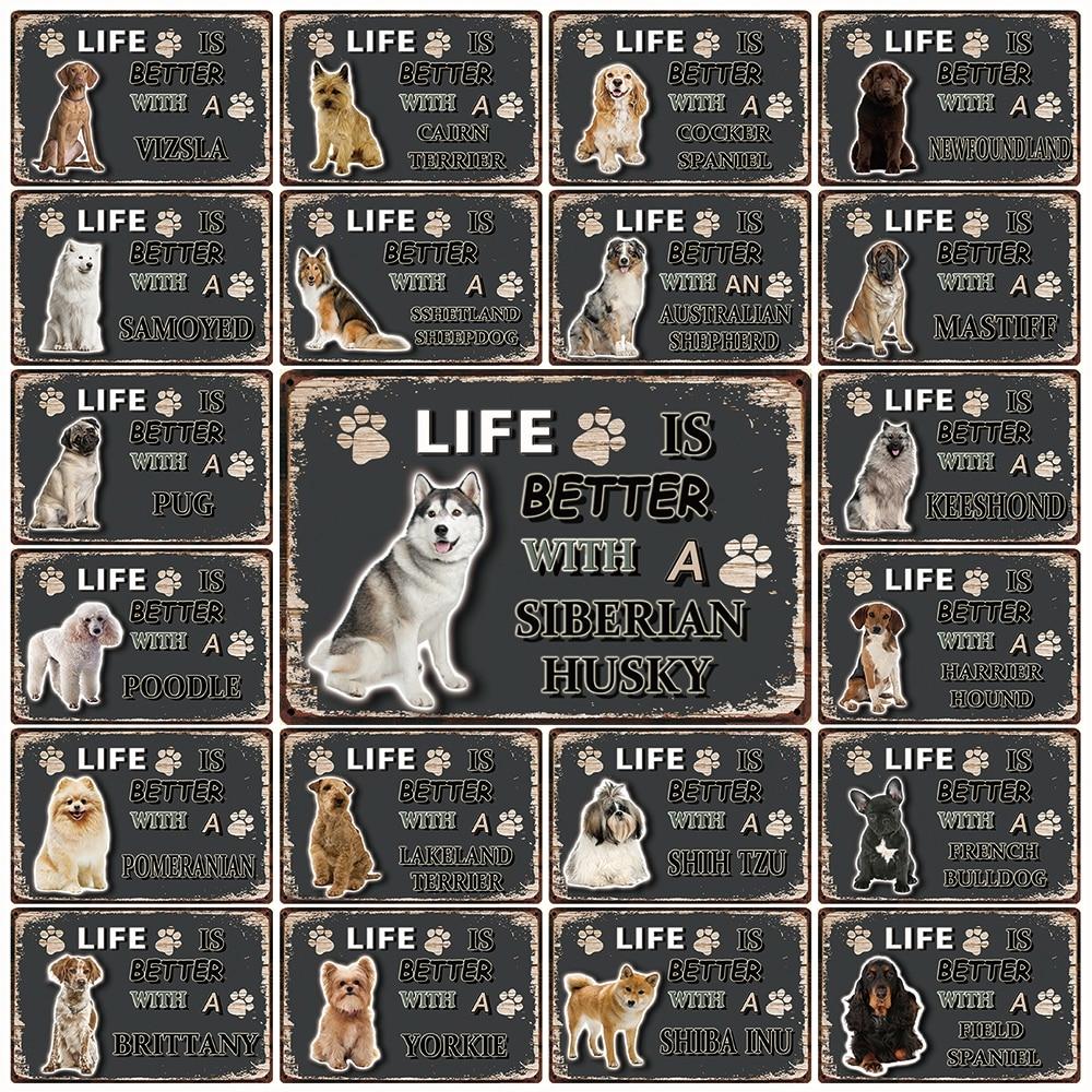 My Pet World Store