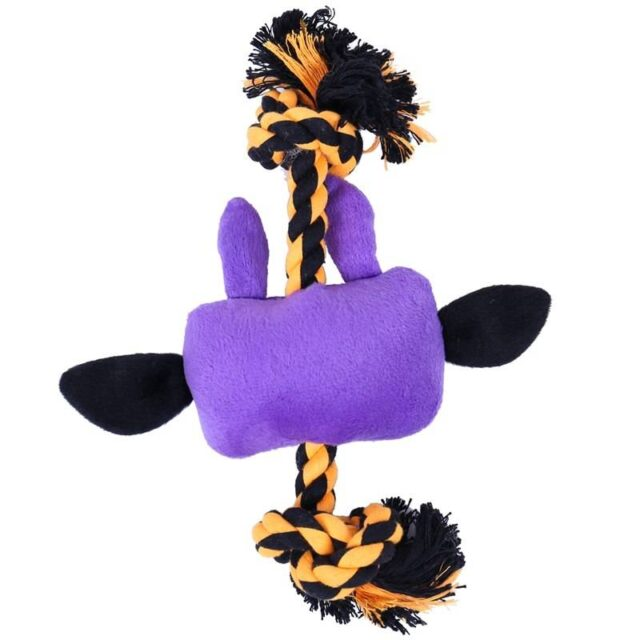 Funny Desisgn Interactive Pet Chewing Toy  My Pet World Store