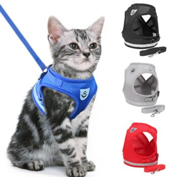 Collars, Harnesses & Leashes Reflective Cat Harness And Leash Set  My Pet World Store