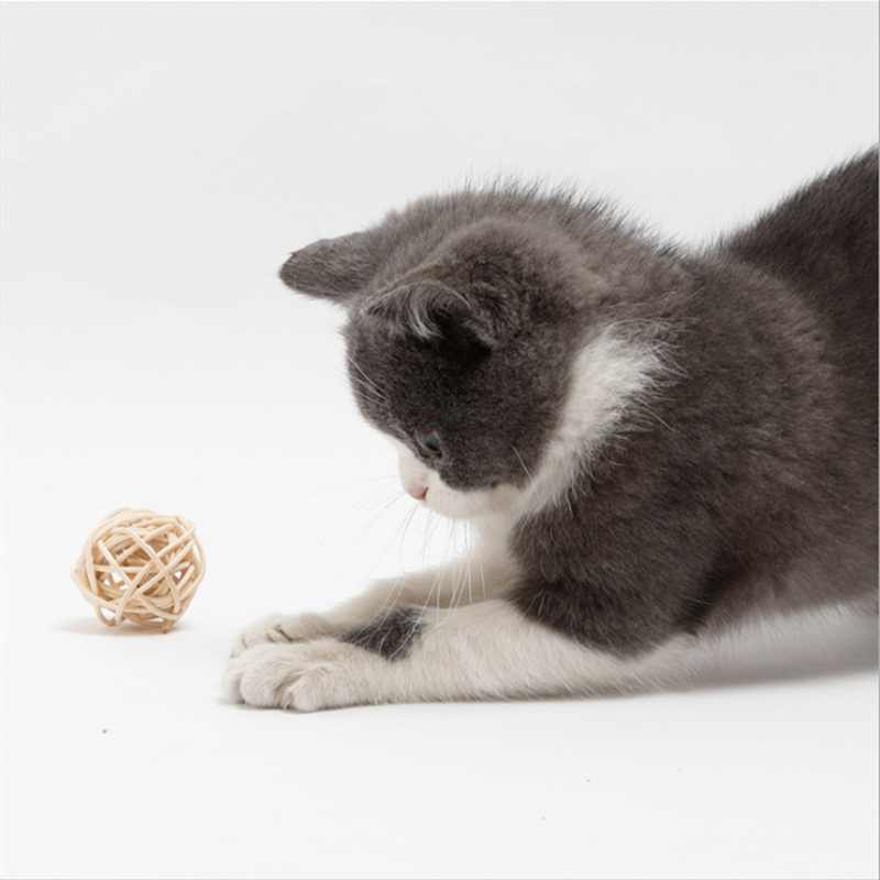 Cats New Arrivals Toys Bamboo Ball Cat Toys Pair  My Pet World Store