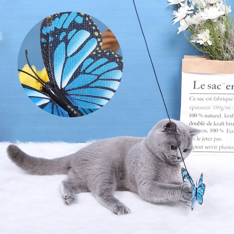 Cats Toys Butterfly Cat Playing Stick  My Pet World Store